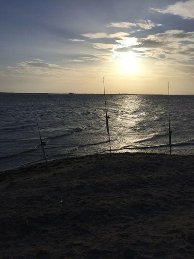 Fishing Summer