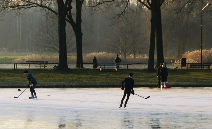 Wintertime Frozen Lake Fun On The Ice Ice Hockey Fast Sport Park Warande Helmond Grass Ice Skating Ice Sports Outdoors People Trees Afternoon Sun Leisure Activity Sport