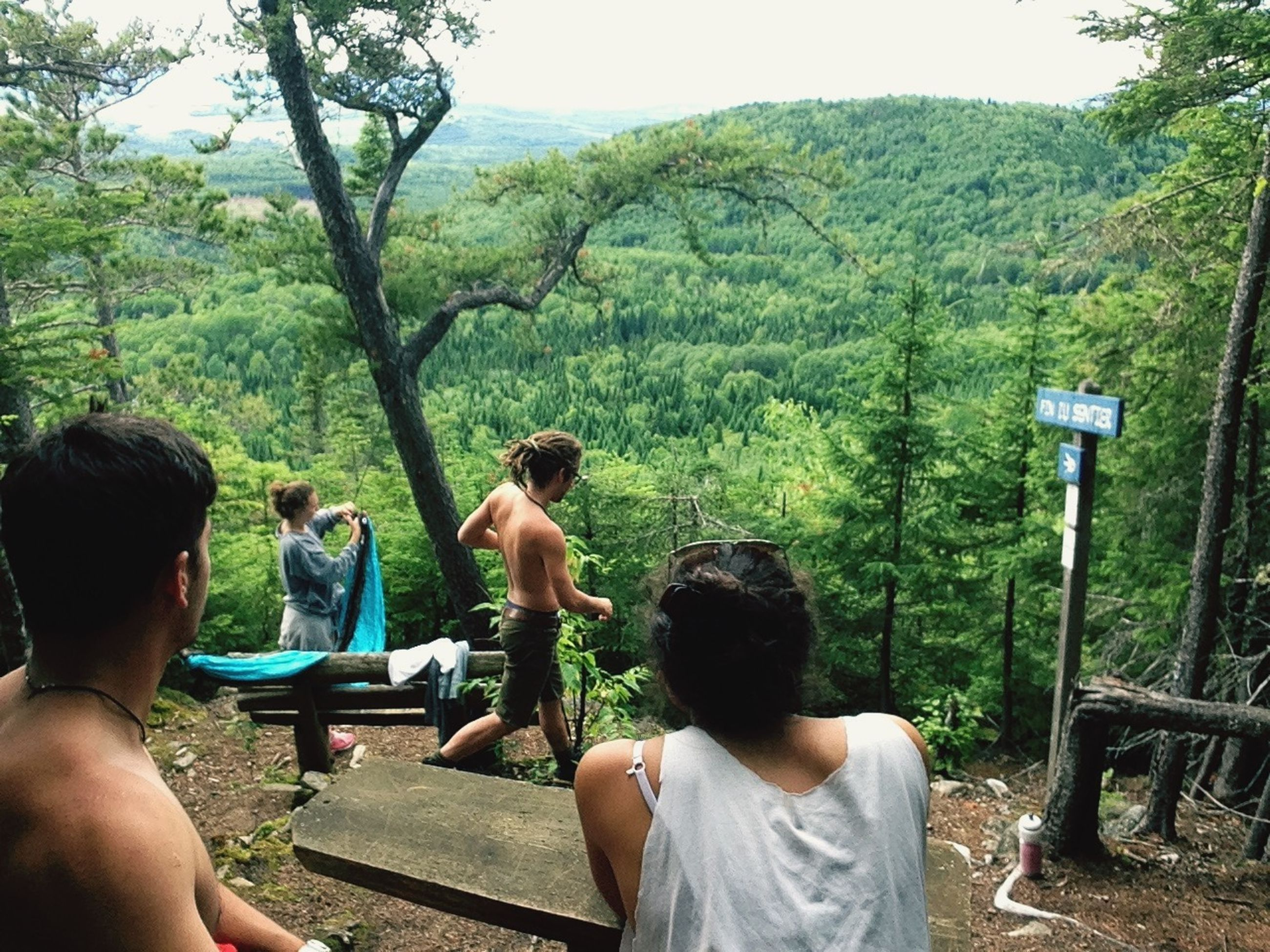 tree, lifestyles, leisure activity, men, person, rear view, sitting, mountain, relaxation, casual clothing, nature, growth, tranquility, green color, day, beauty in nature, tranquil scene