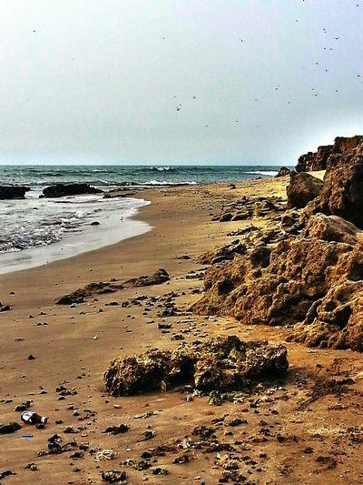 Taking Photos Enjoying The Sights Beach Photography Starting A Trip