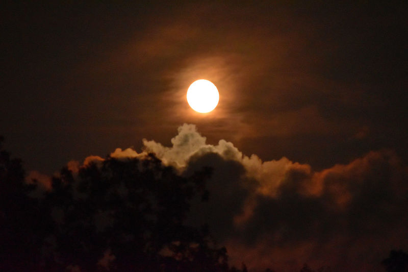 scenic view of moon in cloudy sky Beauty In Nature Cloud - Sky Low Angle View Moon Natural Phenomena Nature No People Outdoors Scenics Sky Tranquil Scene Tranquility