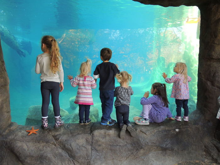 Children Children At The Zoo Children Photography Children Playing Children With Animals Sea Life Sea Life Aquarium Six Children