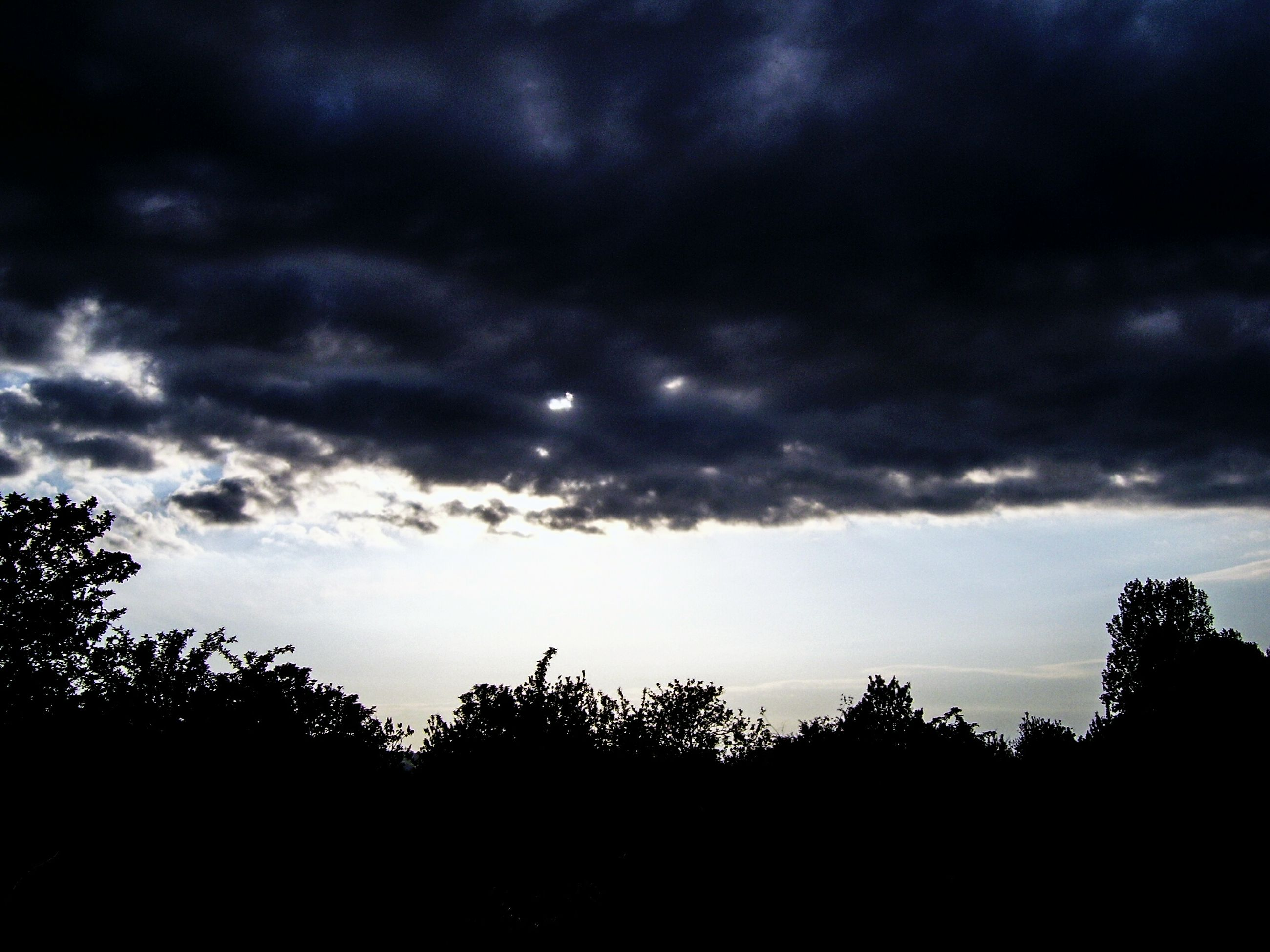 sky, silhouette, cloud - sky, cloudy, tranquility, tree, tranquil scene, beauty in nature, scenics, nature, overcast, low angle view, weather, cloud, storm cloud, dusk, dramatic sky, growth, landscape, idyllic