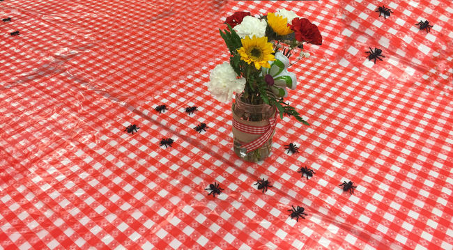 Ants Picnic Day Flower Flower Head Fragility Freshness High Angle View Indoors  Insects  Nature No People Red Rethink Things