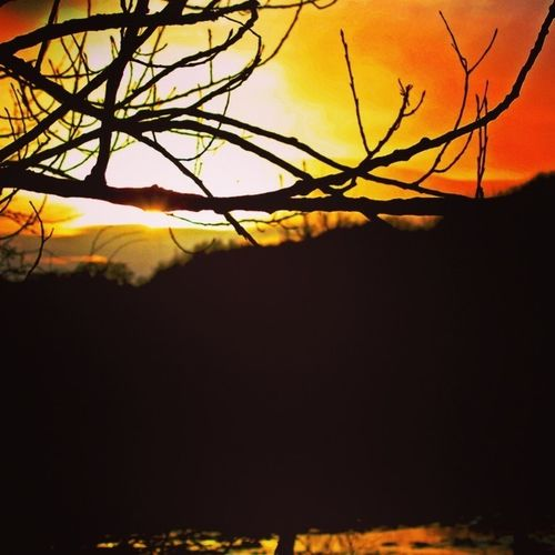 Sunset Sky Sky_collection Fiery Sunset...