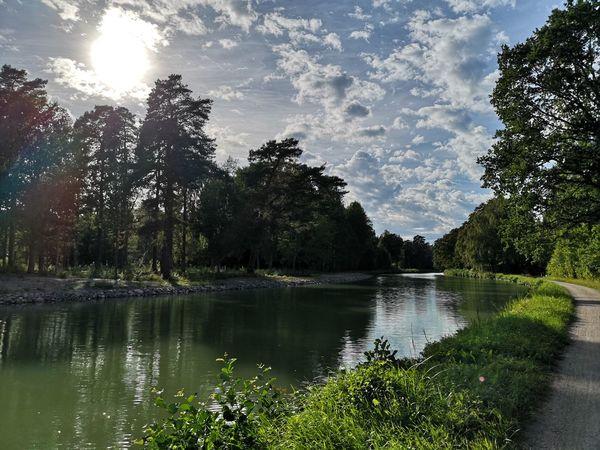 Göta Channel, Sweden, in the summer Water Sun Sunlight Tree Sky Summer Environment First Eyeem Photo