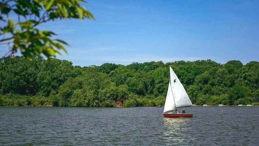 Sail Boat Sailing Water Outdoors landscape