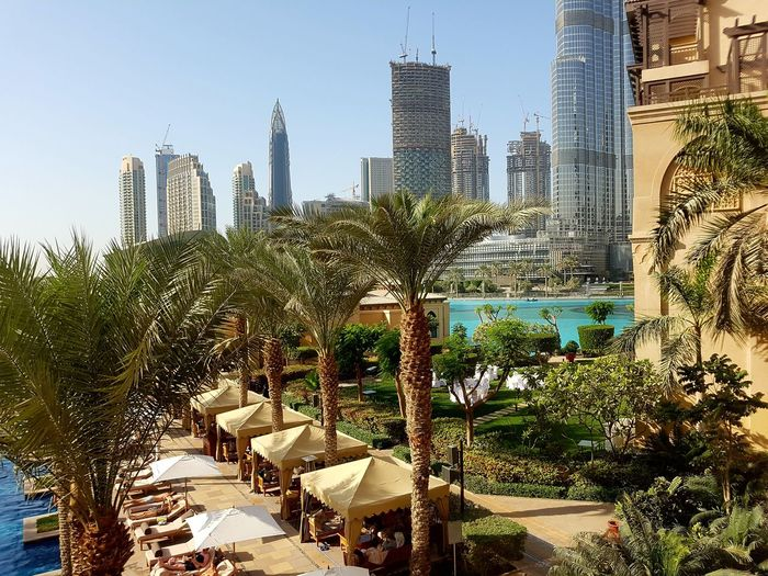 Skyscraper City Tree Architecture Urban Skyline Sky Building Exterior Cityscape Clear Sky No People Modern Travel Destinations Water Outdoors Palm Tree Ornamental Garden Day Cityscape Vacations Dubai Travel Nature Architecture City