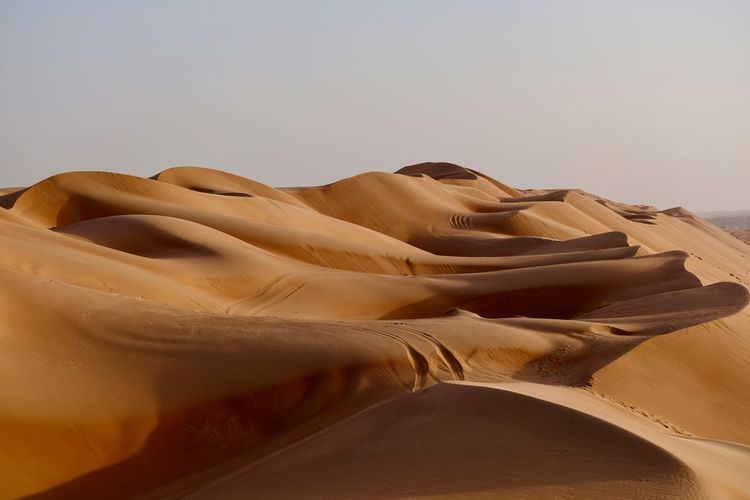 Sultanate Of Oman. Desert Sand Land Scenics - Nature Sand Dune Sky Tranquility Nature Climate Arid Climate Tranquil Scene No People Beauty In Nature Clear Sky Day Non-urban Scene Remote Landscape Outdoors Wahiba Sands Desert Landscape Desert Beauty Bedouin Tribes Bedouin Oman