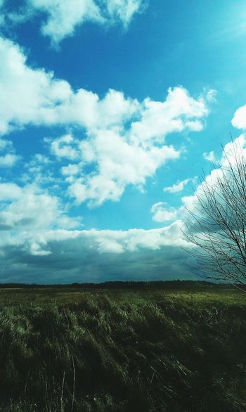 Blue Sky Relaxing