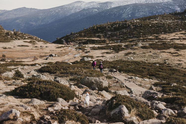 People walking on footpath by rocky mountains