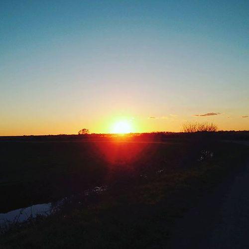 Bleu-noir Coucherdesoleil Sun Paysdelaloire Bourgneuf Beautiful Ciel Paysage Retz Paysderetz Autumn Nature Geo Horizon Liberté Saintcyrenretz Beautiful