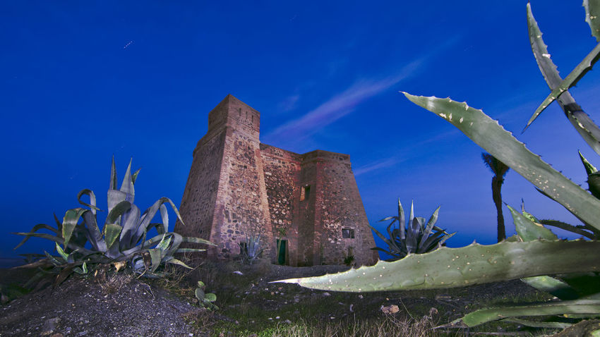 Almería Blue Cactus Castillo Macenas Macenas Napatu Nature No People Nocturna Plant