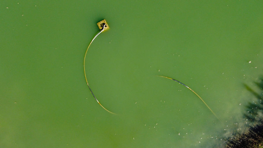 Aerial view from the drone of water pond with tube with snake shape