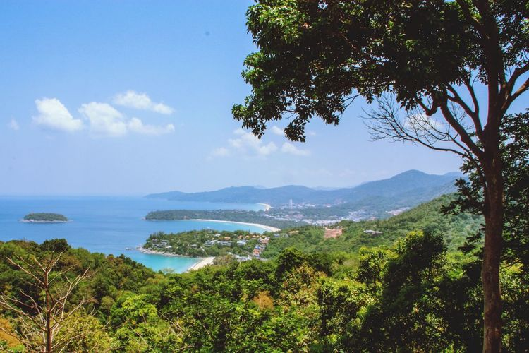 View point , Phuket Thailand Phuket Travel Travel Destinations Sightseeing Visiting Beach Tree View View Point Tree Water Mountain Sea Sky Landscape Plant Cloud - Sky Tourist Attraction  Famous Place