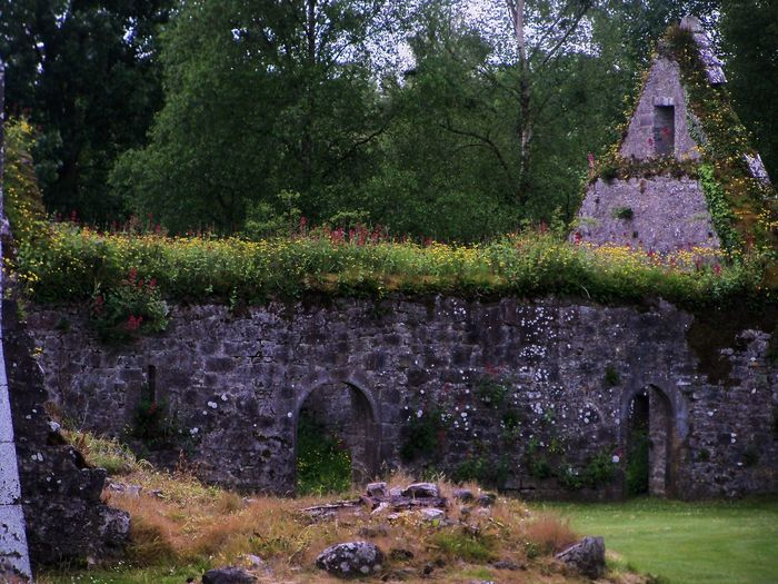 Friary ruins at Adare, Ireland Beauty In Nature Built Structure Day Grass Grassy Green Green Color Growth Landscape Lush Foliage Nature No People Outdoors Plant Ruins, Friary, Priory, Monastery, Fortress, Medieval, Francsican, Flowers, Stone, Sky, History, The Past, Adare, Ireland Scenics Sky Tranquil Scene Tranquility Tree Windows Arches, Roof, Walls, Flowers, Grass, Trees, Stone The Traveler - 2018 EyeEm Awards The Great Outdoors - 2018 EyeEm Awards