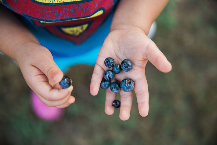 Low section of person holding blueberries