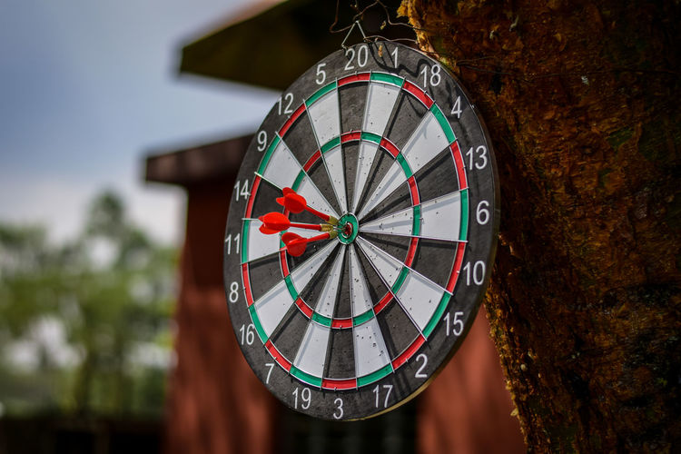 Dart Series 1 When i shoot my shot Focus On Foreground Accuracy Close-up No People Shape Circle Geometric Shape Number Sports Target Day Tree Outdoors Design Hanging Nature Pattern Wood - Material Architecture Built Structure Art And Craft Minute Hand Personal Accessory