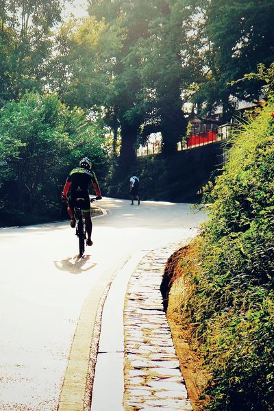 Full Length One Person Road Outdoors FUJIFILM X-T10 Bicycling Sport Changsha, Hunan Travel Landscape Light And Shadow