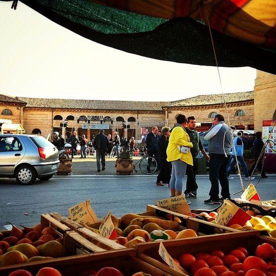 La colture sono culture e viceversa. Ispf2013 Senigallia