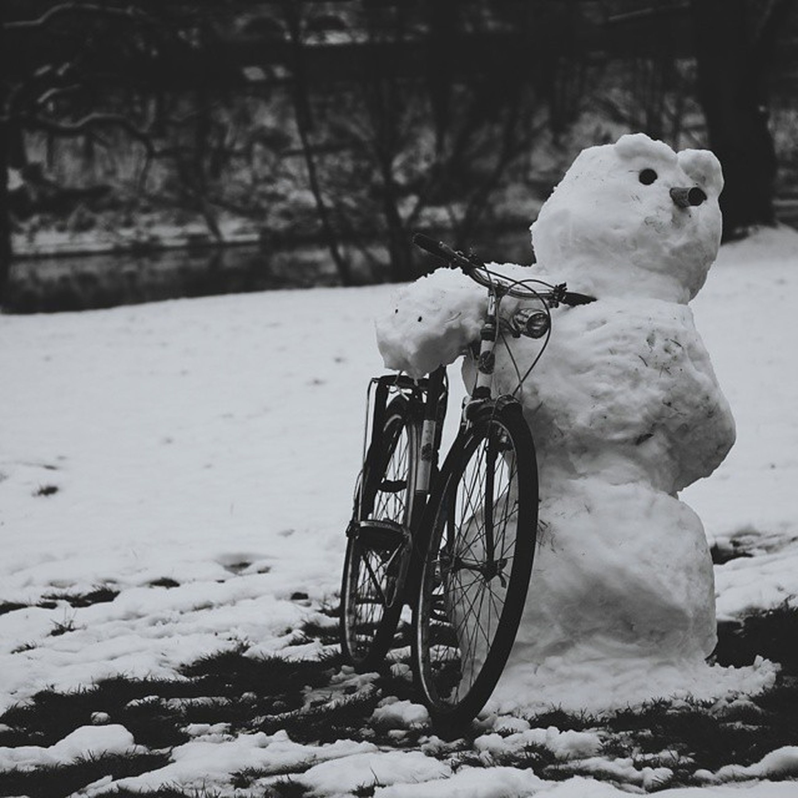 mode of transport, transportation, land vehicle, bicycle, stationary, snow, winter, parking, wheel, parked, cold temperature, white color, outdoors, weather, no people, day, abandoned, side view, tire, street