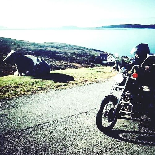 Motorcycle Transportation Only Men One Person Mode Of Transport Outdoors Biker Beauty In Nature Nature Beauty In Nature Isleofskye Scotland Travelling ✈ Scotland Traveller Travel Photography Isle Of Skye Scottish Highlands Nomads Portrait People Backpacker