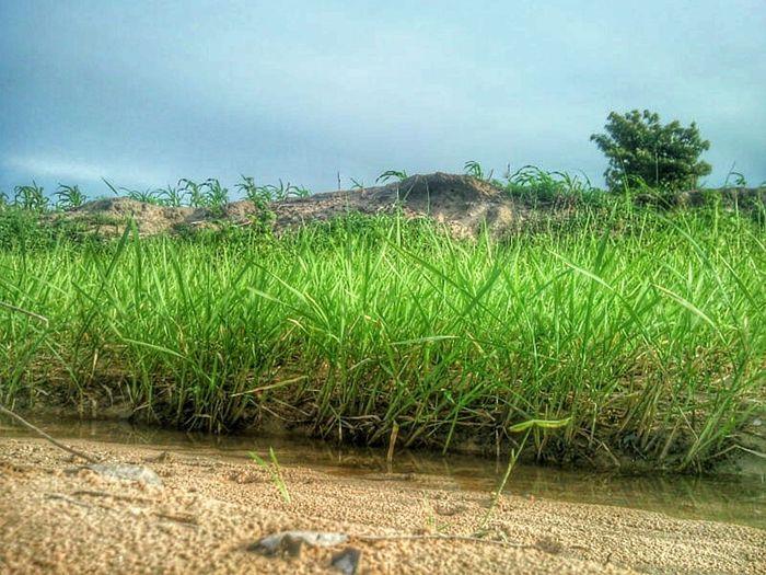 Terra Natura Rainyseason Nature Collection Landscapes