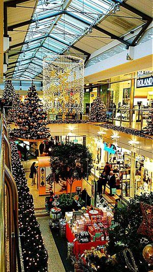 Starting A Trip Hello World Taking Photos Christmas Tree Christmas Lights Christmas Time🌲 Joyeux Noël**Marry Chrismas**Feliz Natal Christmas Decorations Christmas Around The World Shopping Center