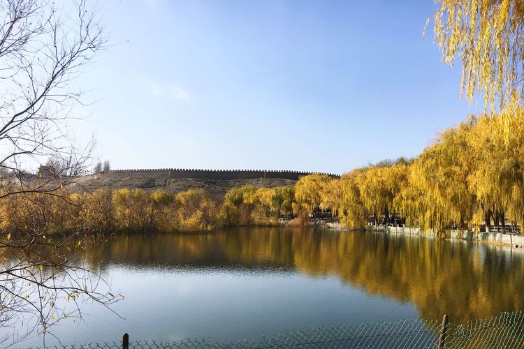 EyeEm China EyeEmNewHere Tree Water Nature Beauty In Nature Scenics Reflection Autumn Tranquility Lake Tranquil Scene No People Bare Tree Outdoors Change Day Sky Clear Sky Autumn Colors Leaves Blue Jiayuguan, China Western Great Wall Great Wall Of China