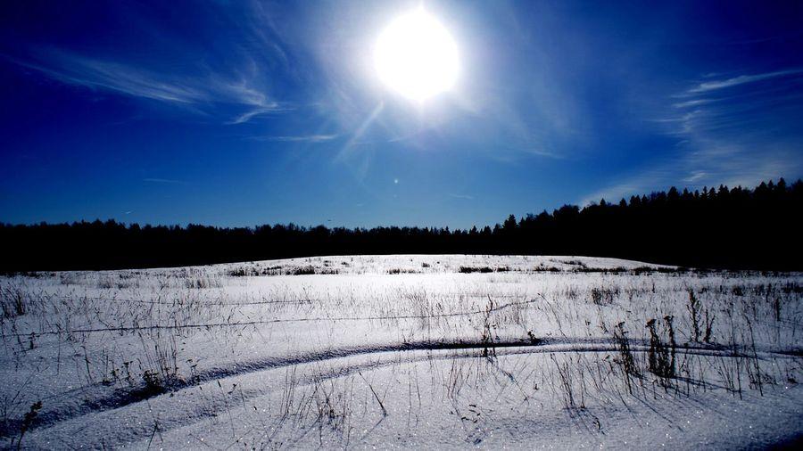 д.Фелисово. Зимний архив💙 Россия подмосковье зима Русскаязима Blue Sky Blue Sky And Clouds Sky Cobalt Blue By Motorola Perspectives On Nature