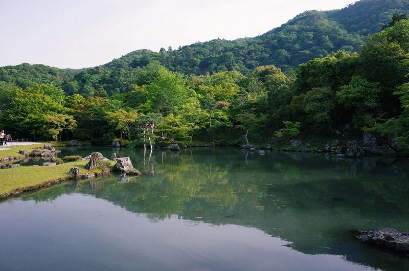 Beauty In Nature Day Green Color Growth Idyllic Lake Mountain Nature No People Non-urban Scene Outdoors Plant Reflection Scenics - Nature Sky Tranquil Scene Tranquility Tree Water Waterfront