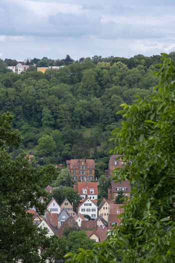 Couple of german houses from the city Schwabisch Hall, surrounded by forest Architecture Nature Architecture Building Building Exterior Built Structure City Forest German House Green Color Hillside House Nature Neighborhood Residential Building Residential District Tree