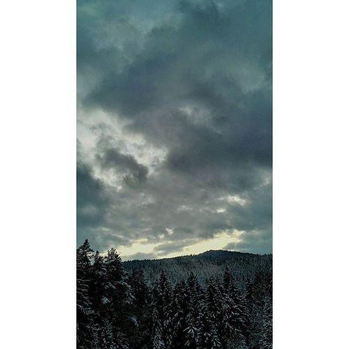 📷zack foddo gemacht und jetz mach was immer du damit machen willst Machwasduwillst Landscape Landscapes Lanscapephotography Landschaftsfotografie Danamic Sky Snow Ontree Trees sonnenjntergang Iregndwann Letztenjahres Likesforlikes Likeforlike L4likes L4l Likers Likediesebild Oderauchnicht Staiseksi