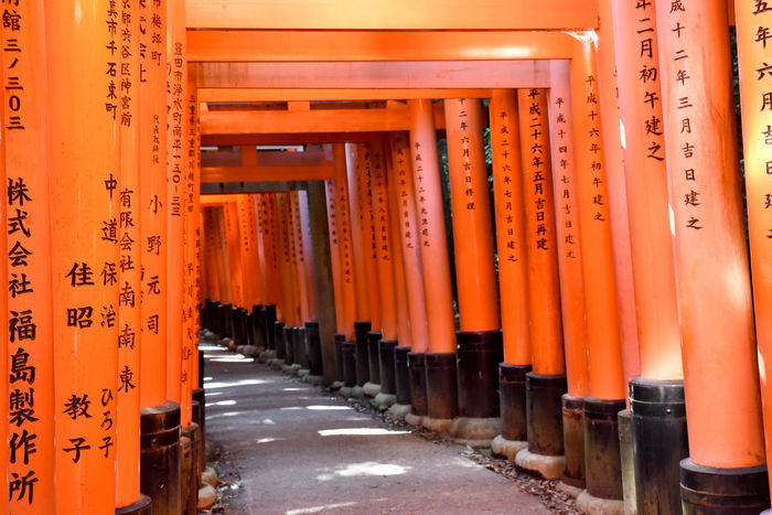 Fushimi Inari Taisha Inari Shrine TORII Architectural Column Architecture Communication Day No People Orange Color Outdoors Place Of Worship Religion Shrine Spirituality Text The Way Forward Tourism Travel Destinations