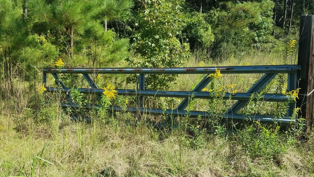 Tree Grass Non-urban Scene Outdoors Countryside No People Beauty In Nature WoodLand Fence Scenics Rusty Rusty Fence Yellow Flowers Naturelover Naturephotography Beauty In Nature Fall Beauty No Edit/no Filter Fall Overgrown Growth Weathered Tranquility Growth My Year My View
