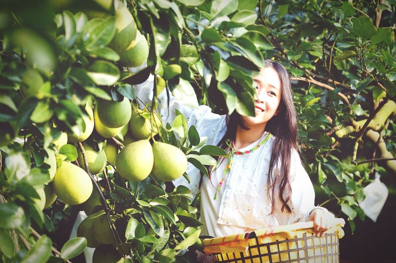 Smiling Young Woman Picking Fruits