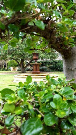Country garden fountain Garden Fountain Country Life Garden Vine