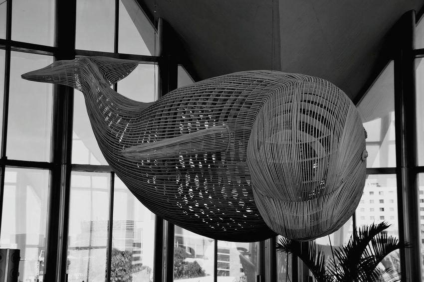 Whale Statue Oceanographic Black & White Blackandwhite Black&white Black And White Blackandwhite Photography Black And White Photography Blackandwhitephotography Blacknwhite Black And White Collection  Black & White Photography Blackandwhitephoto