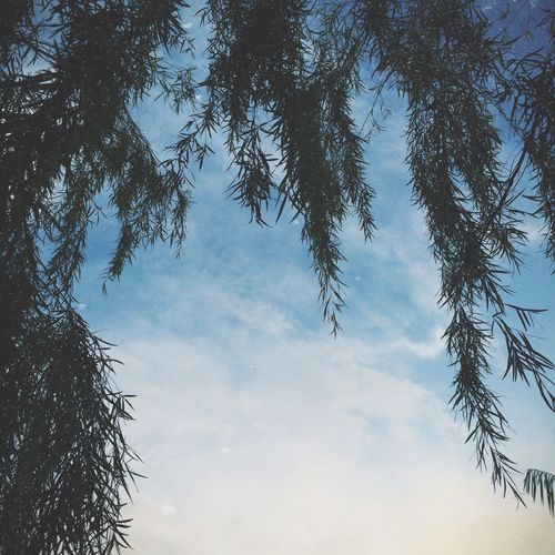 EyeEm Best Shots Eye Em Best Shots IPhoneography Vscocam Clouds And Sky Minimalism EyeEm Nature Lover Camblast Relaxing Getting Inspired