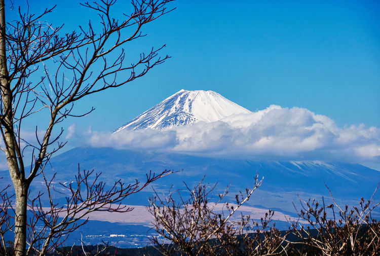 Mt.Fuji Snowcapped Mountain Volcano Winter Day Outdoors Mountain Peak Mountain Snow Sky Cold Temperature Beauty In Nature Scenics - Nature Plant Tranquil Scene Tranquility Tree Nature No People Non-urban Scene Environment Cloud - Sky Mountain Range My Best Photo