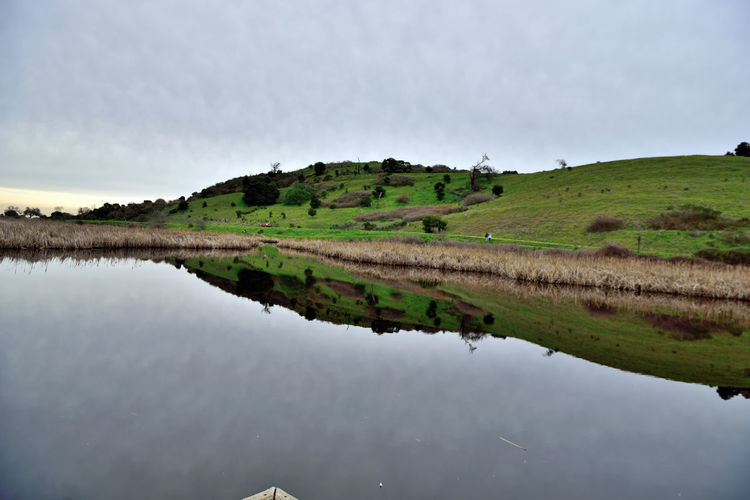 Coyote Hills 4 Coyote Hills Regional Park 978 Acres Southeast San Francisco Bay Small Mountain Range Rolling Hills Grasslands Marshlands Tidal Wetlands Wildlife Refuge Marsh Salt Pond Reflection Reflections In The Water Hiking Adventures Scenic Nature Nature Collection Beauty In Nature Horizon Over Water Overcast Rural Scene Sky Reflection Lake Salt Basin Shore Calm