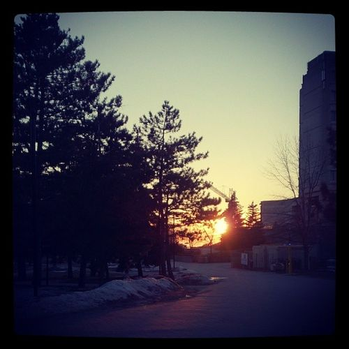 Winterishspring sunset......Nomorewinter Summercoming Beautiful Yorkisu yorku