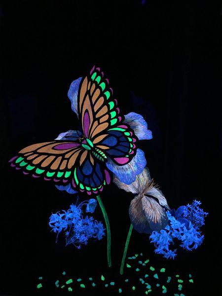 Science Light Art Butterfly Science Museum