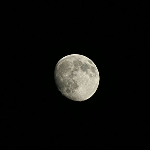 Moon Dark