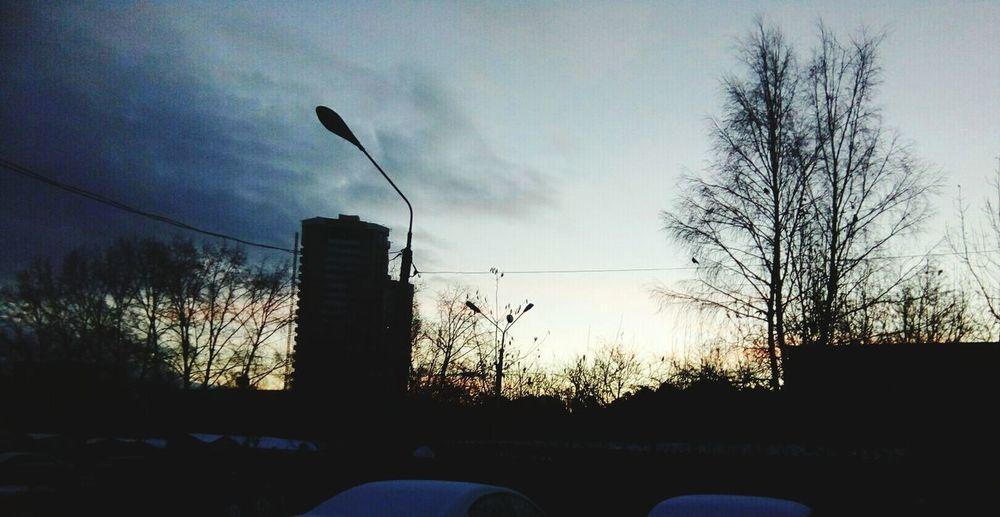Day Sky Cloud - Sky No People Tree Bare Tree Outdoors