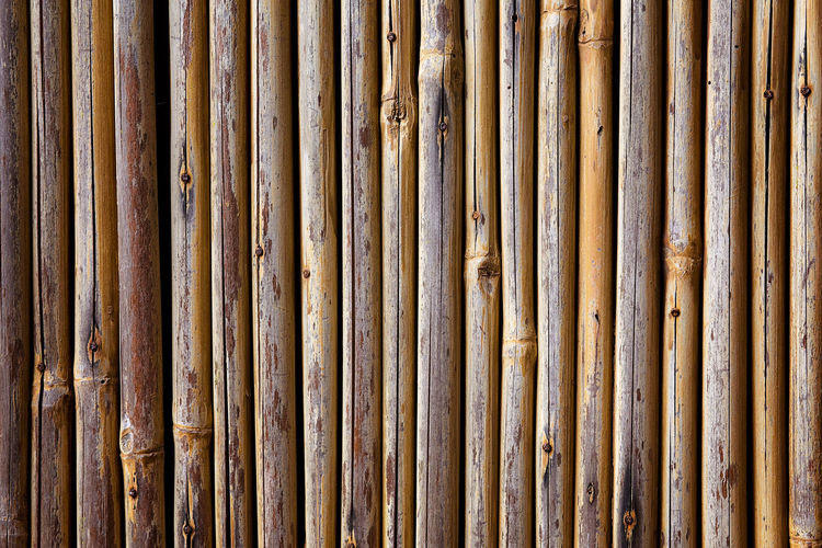 Bamboo Wall Abstract Backgrounds Bamboo Bamboo Fence Bamboo Wall Close-up Day Design Detail Full Frame In A Row Outdoors Pattern Repetition Side By Side Textured  Showcase June Fine Art Photography Maximum Closeness Beautifully Organized My Year My View Minimalist Architecture
