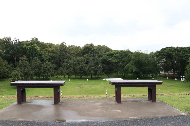 Bench Day Green Color Growth Horizontal Nature No People Outdoors Park - Man Made Space Sky Tree