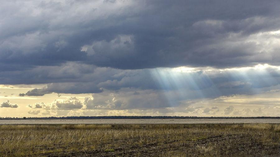 Sunlight streaming on field against sky
