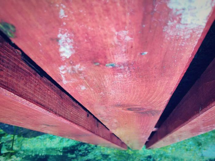 upsidedown Upsidedownit! Jungle Wood Red Close-up