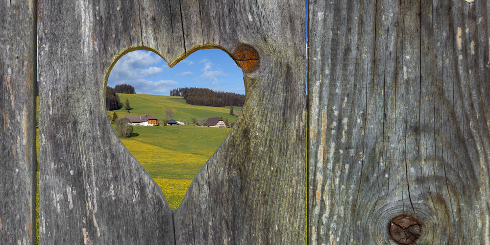 looking through a heart shape in the landscape Bogs Plant Barrier Textured  Fence No People Day Wood - Material Breitnau  Spring Farmland Farm Prospect Outlook Looking Through Looks Looking Heart Shape Shape Wooden Heard Weathered Rustic Nature View Through Landscape View Throug The Door View Black Forest Schwarzwald Wood Wooden Wooden Wall Wooden Door Washroom Toilets Toilet Squatting Squats South Germany Shaped Restroom Portaloo Portable Toilet Outside Outdoors Lavatory Hearts Heard  Germany Formed Exterial Shot Door Tree Land Grass Field Boundary Hole Green Color Close-up Environment Beauty In Nature Textured